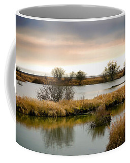 Coffee Mug featuring the photograph Wintery Wetlands by Jordan Blackstone