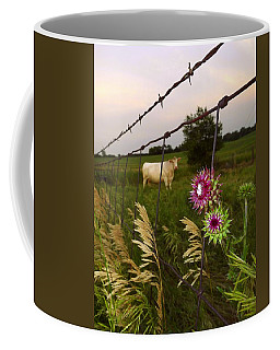 Coffee Mug featuring the photograph Wisconsin Evening by Viviana  Nadowski