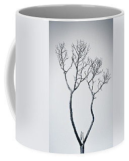 Coffee Mug featuring the photograph Wishbone Tree by Carolyn Marshall