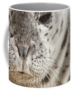 Coffee Mug featuring the photograph Wiskers by David Millenheft