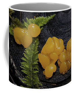 Coffee Mug featuring the photograph Witches Butter by Betty Depee