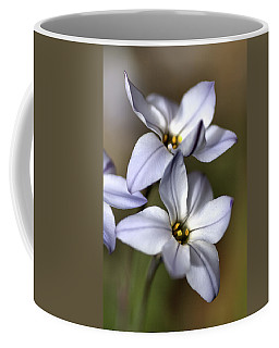 Coffee Mug featuring the photograph With Company by Joy Watson