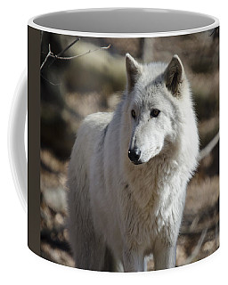 Timber Grey Wolf Coffee Mug