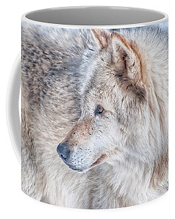 Coffee Mug featuring the photograph Wolf In Disguise by Bianca Nadeau