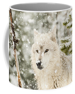 Wolf In Snow Coffee Mug