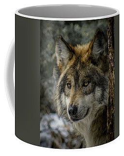 Wolf Upclose 2 Coffee Mug