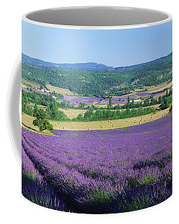 Woman In A Field Of Lavender Coffee Mug
