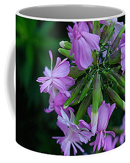 Coffee Mug featuring the photograph Wonderful Morning Flower by John S