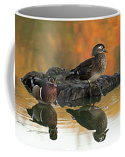 Wood Ducks Coffee Mug