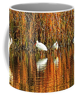 Wood Storks And 2 Ibis Coffee Mug