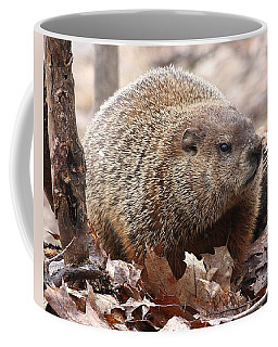 Woodchuck Watching Coffee Mug