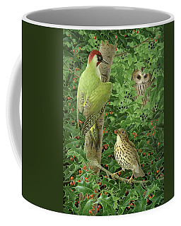 Woodpecker Owl And Thrush  Coffee Mug