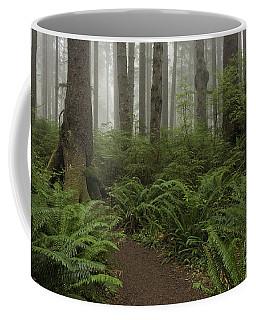Woods Trail Coffee Mug