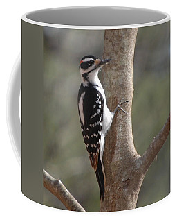 Coffee Mug featuring the photograph Woody by Mim White
