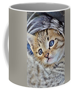 Wrapped In Mother's Love Coffee Mug