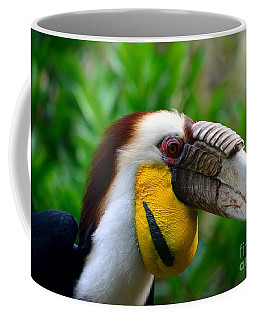 Coffee Mug featuring the photograph Wreathed Hornbill by Lisa L Silva