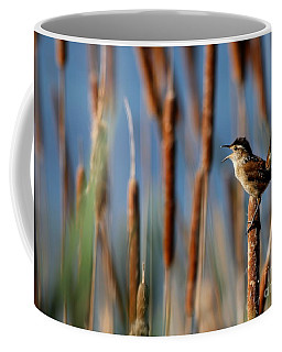 Wren Singing Coffee Mug
