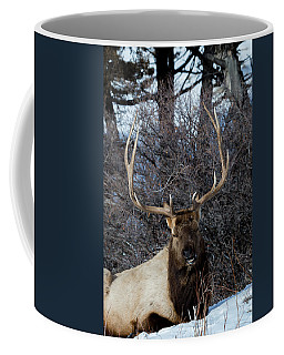 Coffee Mug featuring the photograph Wyoming Elk by Michael Chatt