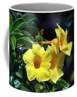 Coffee Mug featuring the photograph Yellow Allamanda by Teresa Zieba