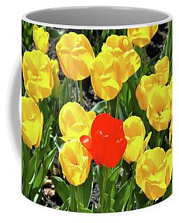 Yellow And One Red Tulip Coffee Mug