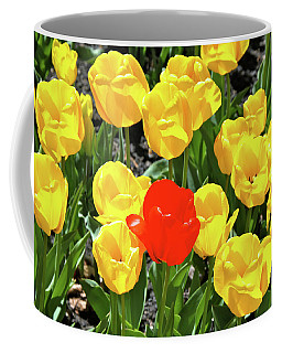 Yellow And One Red Tulip Coffee Mug by Ed  Riche