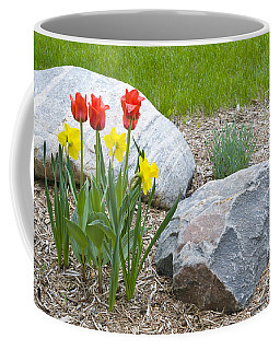 Yellow And Red Tulips With Two Rocks Coffee Mug