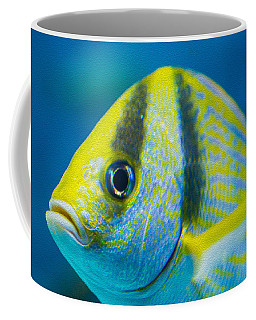 Atlantic Porkfish Coffee Mug