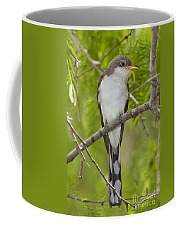 Yellow-billed Cuckoo Coffee Mug