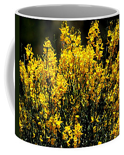 Coffee Mug featuring the photograph Yellow Cluster Flowers by Matt Harang