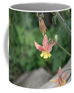 Yellow Columbine 2 Coffee Mug