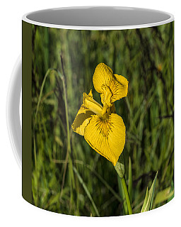 Coffee Mug featuring the photograph Yellow Crown by Leif Sohlman