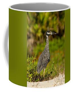 Yellow Crowned Night Heron Dune Watch Coffee Mug