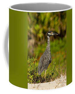 Yellow Crowned Night Heron Dune Watch Coffee Mug