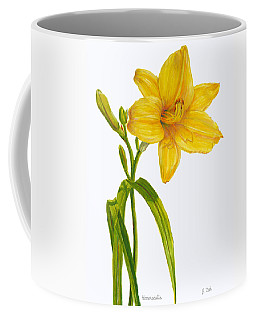 Yellow Daylily - Hemerocallis Coffee Mug