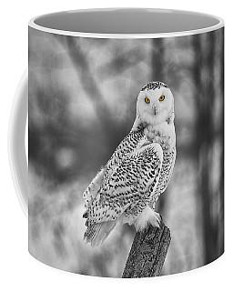 Yellow Eyes Coffee Mug by Eunice Gibb