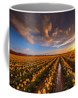 Yellow Fields And Sunset Skies Coffee Mug by Mike Reid
