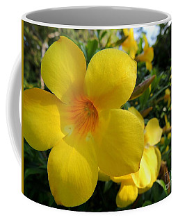 Coffee Mug featuring the photograph Yellow Flower by Kristine Merc