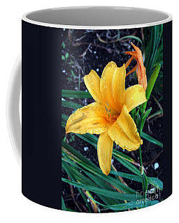 Coffee Mug featuring the photograph Yellow Flower by Sergey Lukashin