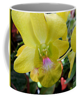 Coffee Mug featuring the photograph Yellow Orchid by Kristine Merc