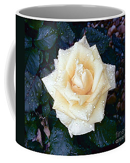 Coffee Mug featuring the photograph Yellow Rose At Dawn by Alys Caviness-Gober