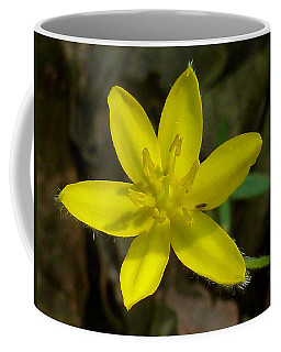 Yellow Star Coffee Mug by William Tanneberger
