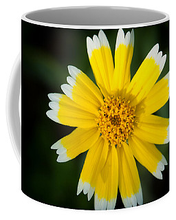 Yellow Sunshine  Coffee Mug