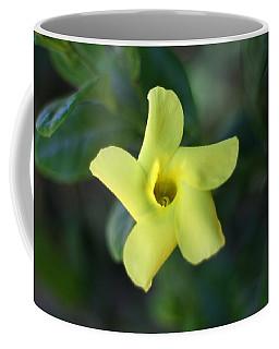 Coffee Mug featuring the photograph Yellow Trumpet Flower by Ramabhadran Thirupattur
