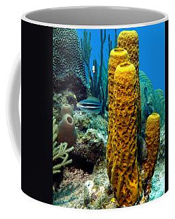 Yellow Tube Sponge Coffee Mug