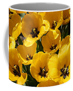 Coffee Mug featuring the photograph Golden Tulips In Full Bloom by Dora Sofia Caputo Photographic Art and Design