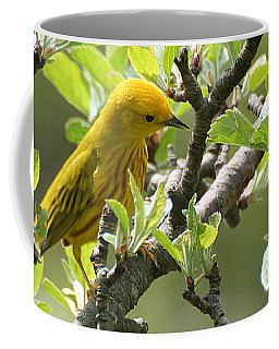 Coffee Mug featuring the photograph Yellow Warbler In Pear Tree by William Selander