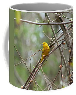 Yellow Warbler Coffee Mug