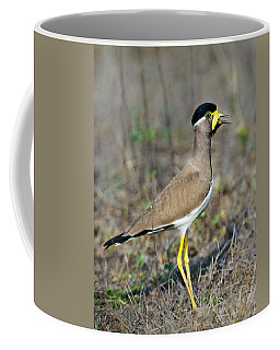 Yellow-wattled Lapwing Vanellus Coffee Mug