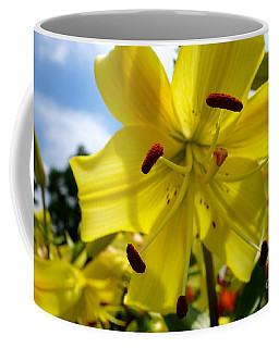Yellow Whopper Lily 2 Coffee Mug
