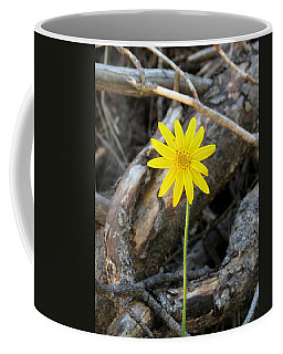 Coffee Mug featuring the photograph Yellow Wildflower by Laurel Powell